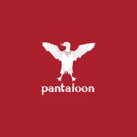 Pantaloon Children's Clothing
