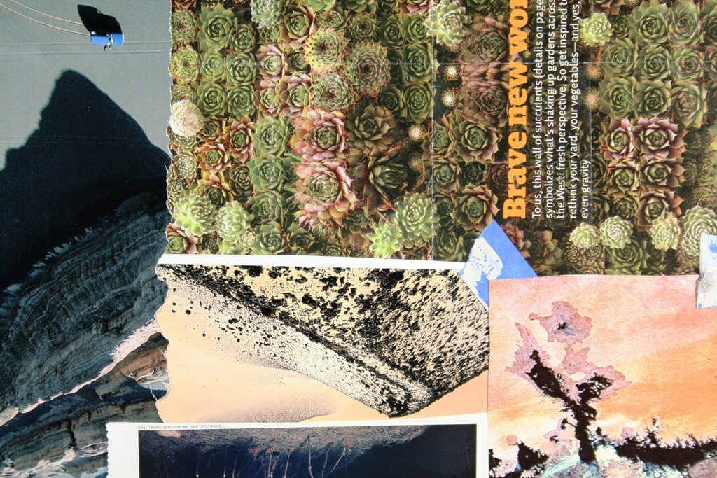 365_collages_66