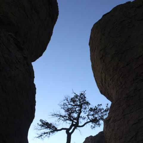 day 287: chiricahua national monument