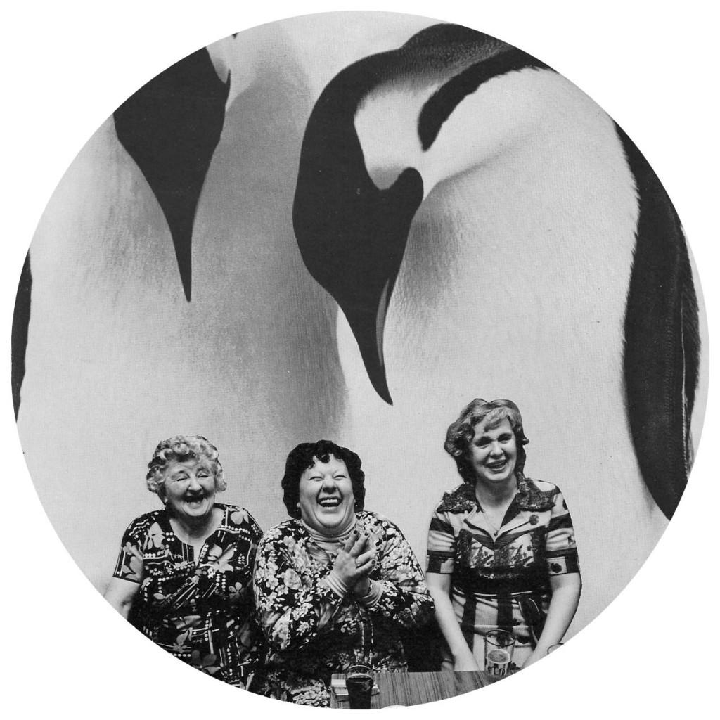 penguin ladies