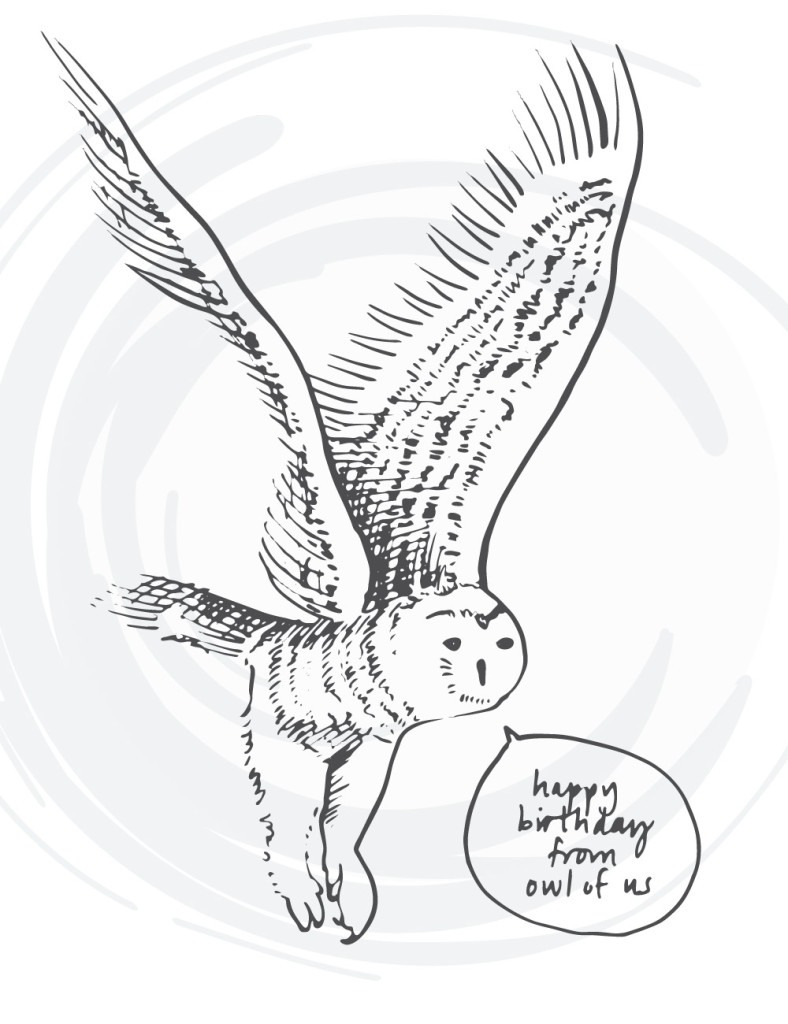 bird-cards-web-07