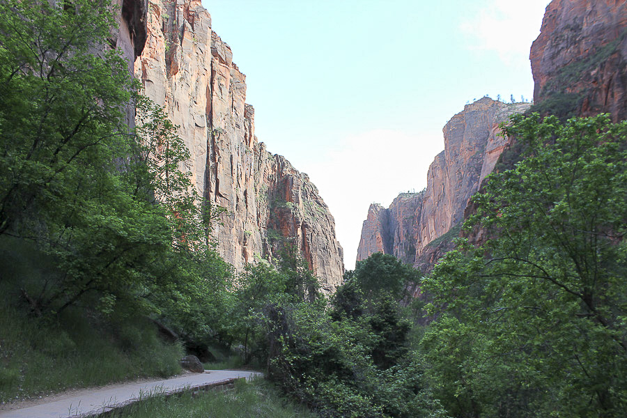 zion national park_10