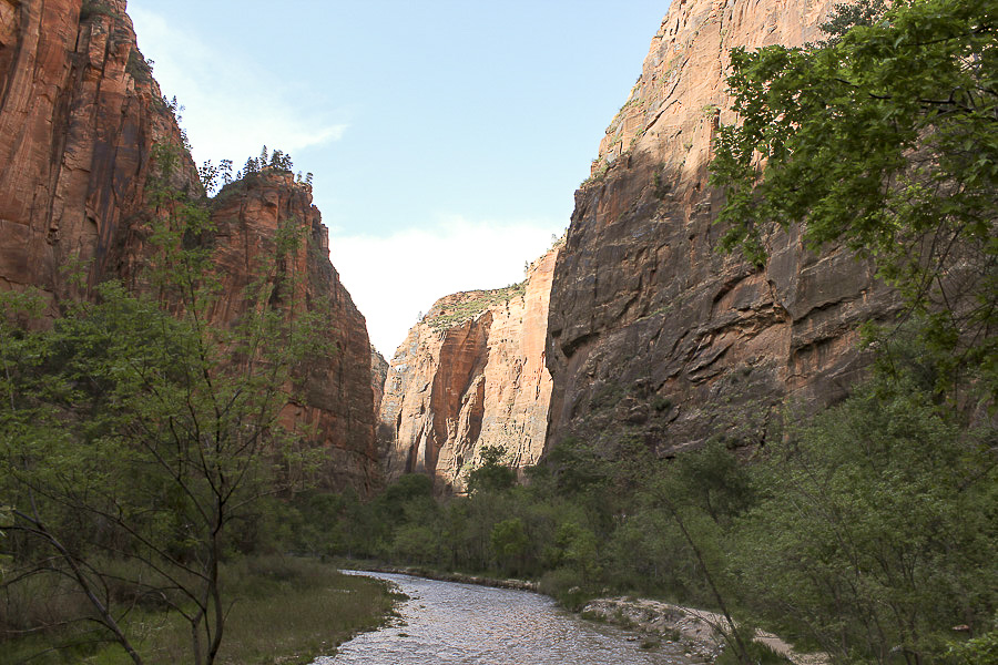 zion national park_12