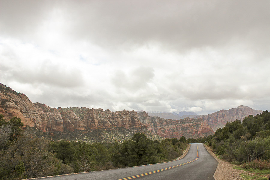 zion national park_17